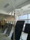 Gerador de energia eólica do eixo horizontal com certificado Ce
