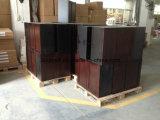 Шкафы микстуры твердой древесины клена открытые