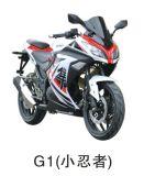 Carreras de Motos Modelo G1