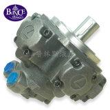 Nhm2-100/125/150/175/200/250/280 Motor de Pistão Radial