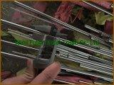 Barra rotonda laminata a caldo dell'acciaio inossidabile 301