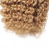 Волосы спереди кружевом Wig Omber 100% Brazalian вьющихся волос в области кривой
