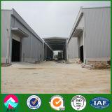 Grande gruppo di lavoro prefabbricato della struttura d'acciaio