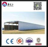 Estructura de acero personalizados de alta calidad Almacén (BYSS038)