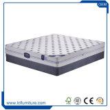 Colchón natural modificado para requisitos particulares de la palma de coco del colchón del látex de la suavidad de la tela