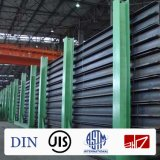 Fascio d'acciaio di Ss400 JIS 148*100 H