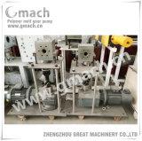 Feuille de plastique à deux couches Co-Extrusion machine avec la fonte de la pompe à engrenage