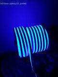 Ce EMC LVD RoHS Deux ans de garantie, New Square LED Neon Rope (WD220-SQ2W-2835-120L-NFL)