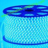 Lumière de bande de l'éclairage LED 230V/110V SMD5050 DEL ETL