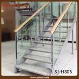 O anti vidro laminado Tempered interior do enxerto pisa a escadaria reta (SJ-S016)