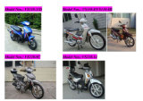 Motociclo del cucciolo C110 (VS110-11D/VS110-8/VS110-8B/VS110-9C/VS110-14)