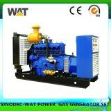 potere di gassificazione del gruppo elettrogeno della biomassa 50kw