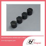 Magneet van uitstekende kwaliteit van het Ferriet van de Ring van de Douane de Permanente voor Motoren