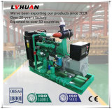 中国のブランドは販売のために工場価格のMiniwatt GENの30のKwの天燃ガスの発電機セットした