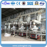 Une grande capacité de la biomasse pour la vente de ligne de production de pellets