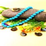 A abóbora natural de turquesa de Stablized perla a colar