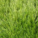 優れた自然な緑の景色の人工的な草