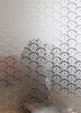 패턴 예술 Tempered 건물 페인트 장식 유리제 단지 문 Windows 예술