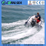 Barca di sport per 6 persone