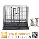 Commerce de gros tube creux chien transporteur