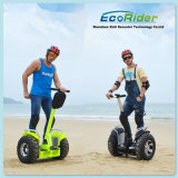 Golf HolderのRoad ATV Two Wheel Electric Scooter 2000Wを離れた多機能のLithium Battery