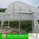 Populaire Type Hot Sale Tunnel Plastic Greenhouse Film Landbouw