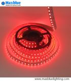 DC24V 120LEDs/M RGBW Rgbww 4 Channel LED Strip Light