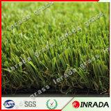 景色の水のない芝生の人工的な泥炭の草