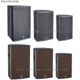 Fabrik-Verkaufs-Fachmann 10 Zoll-Karaoke-Stereoanlage-Lautsprecher