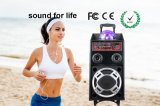 2.0 Portable Karaoke Active Bluetooth Trolley Speaker for Stage Concert