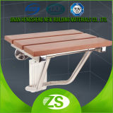 Cuarto de baño de madera sillas plegables Ducha WC para minusválidos