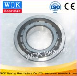 Nylonrahmen-zylinderförmiges Rollenlager der Wqk Peilung-Nj208etvp2