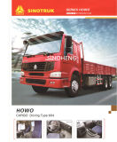 Hot Sale 300HP HOWO Sinotruk CARGO 6X4 10roues