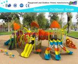 Mais novo parque ao ar livre Crianças Equipamentos Playground (HA-03301)