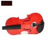 熱い販売のための自由な言い分が付いている赤い合板学生のバイオリン