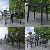 안뜰은 알루미늄 테이블 및 의자 식탁 세트 TG Hl808를 착석시킨다