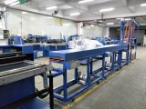 Levantamiento de poliéster Webbings máquina de impresión automática de pantalla DS-302