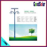 Licht des Park-helles Solargarten-10W-50W