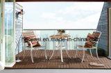 Aluminium extérieur/de jardin/patio rotin et Tableau HS6123dt-2 de Polywood