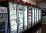 Qualidade Dood portas de vidro de Giro Duplo de congelador de exibição