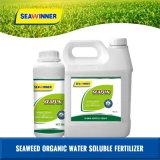Seafun(algas líquido composto funcional)