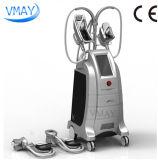 Schneller Gewicht-Verlust Cryolipolysis fetter Frost, der Maschine für Salon-Klinik abnimmt