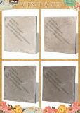 Azulejo de suelo de cerámica de la mirada de 600*600 Cemen (NL-3)