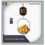 Con un peso de fruta para almacenar la escala de precios de la pantalla LCD 15kg.