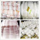 Rete da pesca di pesca del Multifilament di nylon professionale della strumentazione