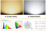 LEIDENE van de Controle 10With20With30With50W van de Sensor van de motie Schijnwerper Waterdicht met de LEIDENE van Ce RoHS Lichten 85V-265V van de Vloed
