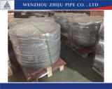 Roestvrij staal 304 van de Verkoop van China Heet HoofdGLB