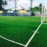 Konkurrierender Fußball-künstlicher Rasen vom Berufslieferanten (SB)