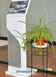 Розничная торговля металлическая подставка для дисплея Custom металлические изготовление (LFCR0186)