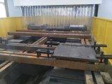 Perforatrice di CNC di serie di Tphd per la grande fabbricazione del foro delle flange di piatti di formato
